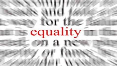 Equality In Our Lobo Nation