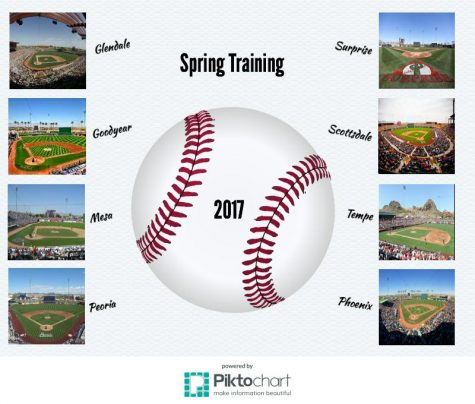 Spring Training: 2017