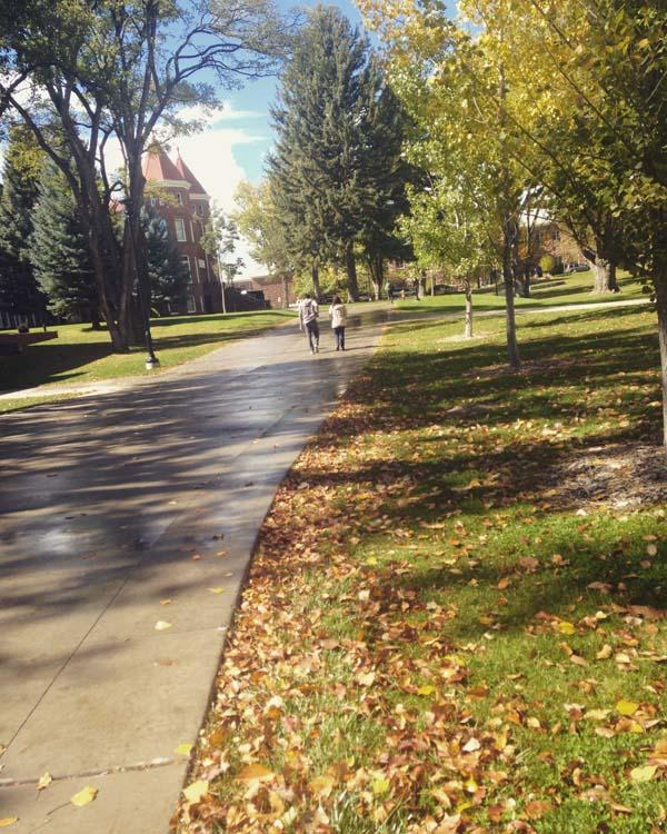 North+Quad+of+Old+Main+covered+in+fall+leaves.
