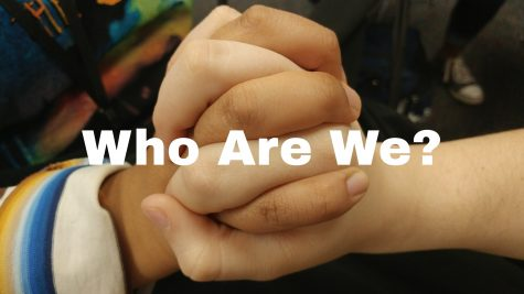 Who Are We? An Inside Look on Diversity