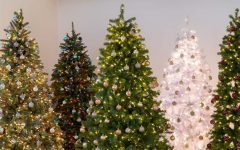 All About Christmas Trees