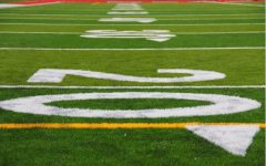 Zoomed up on football field